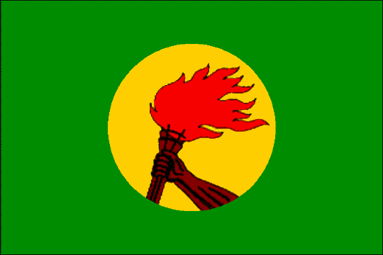 state flag Republic of Zaire