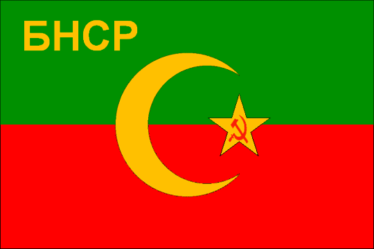 state flag Bukharan People's Soviet Republic