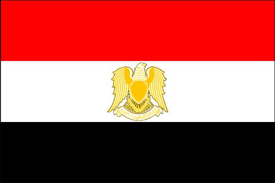 image flag Syrian Arab Republic